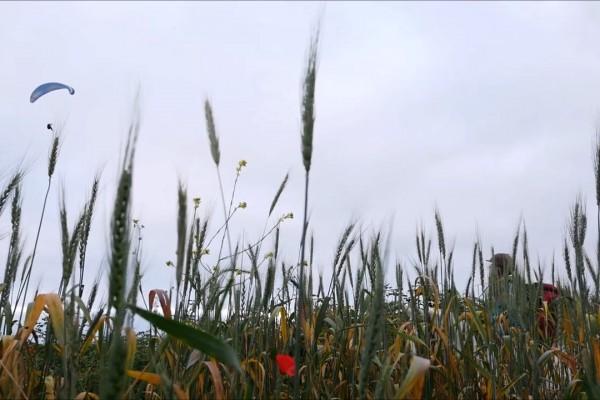 Cielo y tierra, traversée de la Colombie à cheval et en parapente