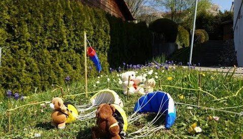 Confinement : les Teddys ont le droit de voler en parapente