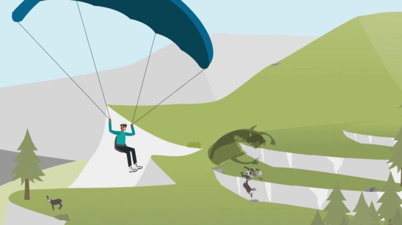 Les dangers du parapente sur la faune sauvage (chamois, rapaces)