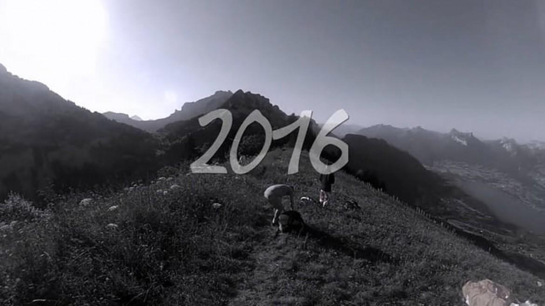 « Rétro 2016 », le best of des vols de Dominique Moreau
